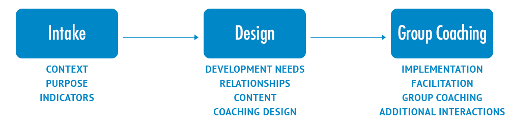 Team Coaching Model